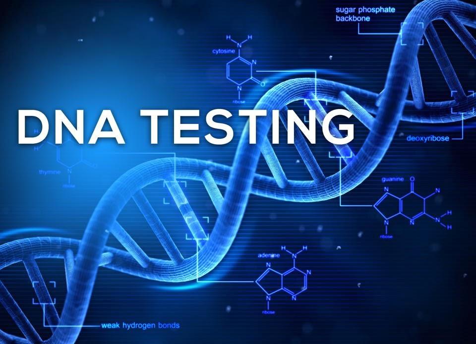 ADN chứa thông tin di truyền của con người